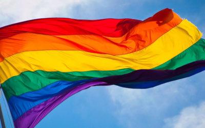 Тренінги з правової просвіти для ЛГБТІ та їх союзників. Дослідження щодо становища одностатевих партнерств в Україні.